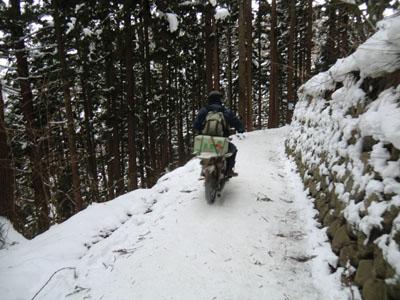 信州の山道